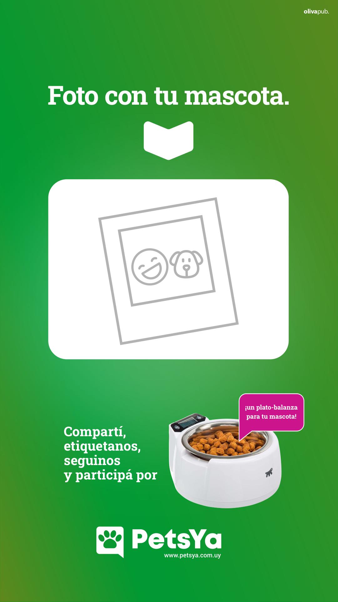 PetsYa - Gráficas para redes 2